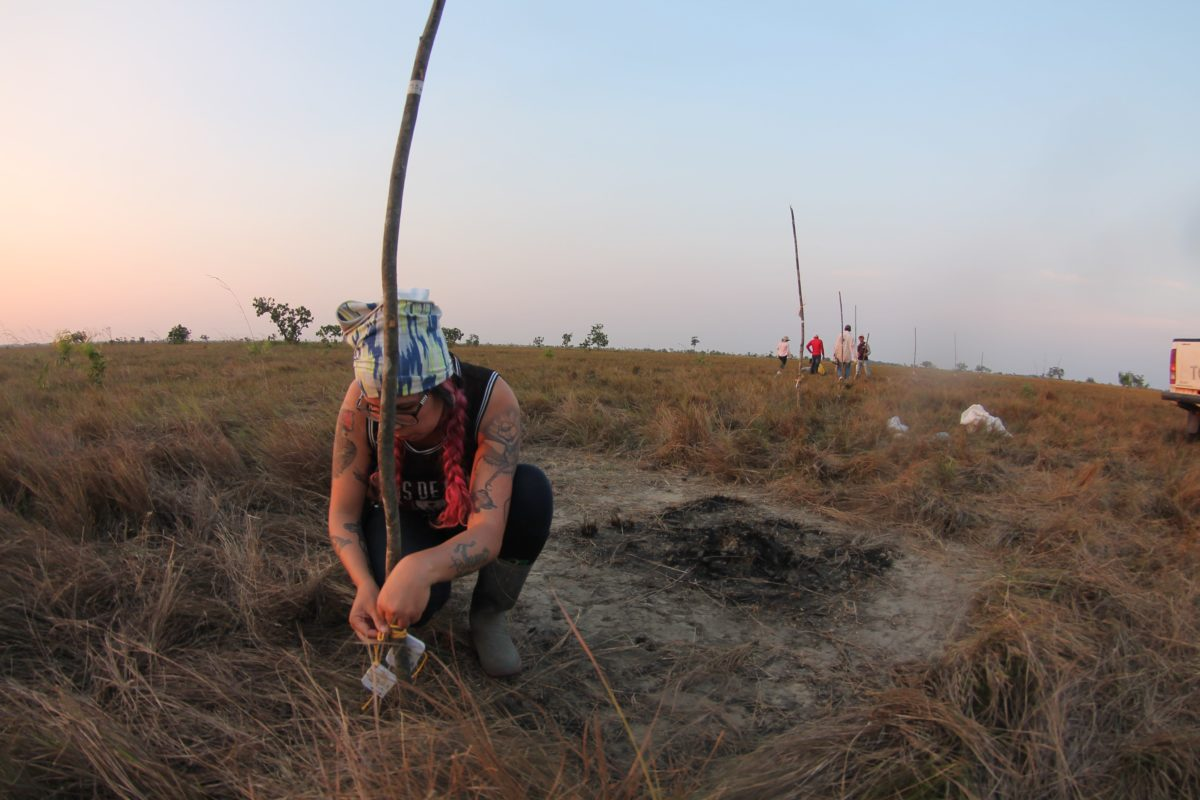 Manejo del fuego. Trabajo de campo en una zona afectada por el fuego. Foto: Arturo Cortés.