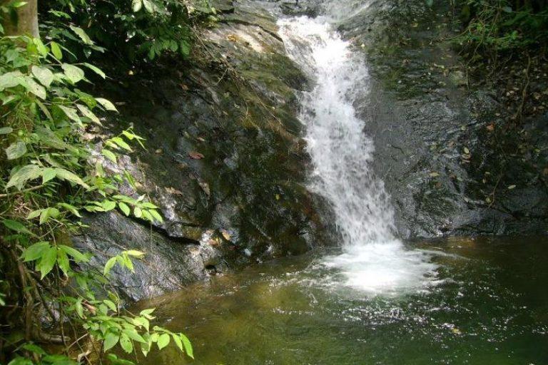 Asesinato líder ambiental Colombia. En el Parque Nacional Natural Farallones nacen 30 ríos que abastecen al suroccidente colombiano. Foto: Corporación Autónoma Regional del Valle del Cauca (CVC).