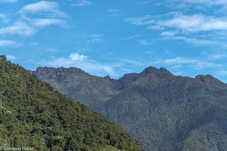 Parque Nacional Natural Farallones de Cali. Ubicado en la cordillera occidental de Los Andes, Pacífico colombiano. Foto: © Giovanny Pulido