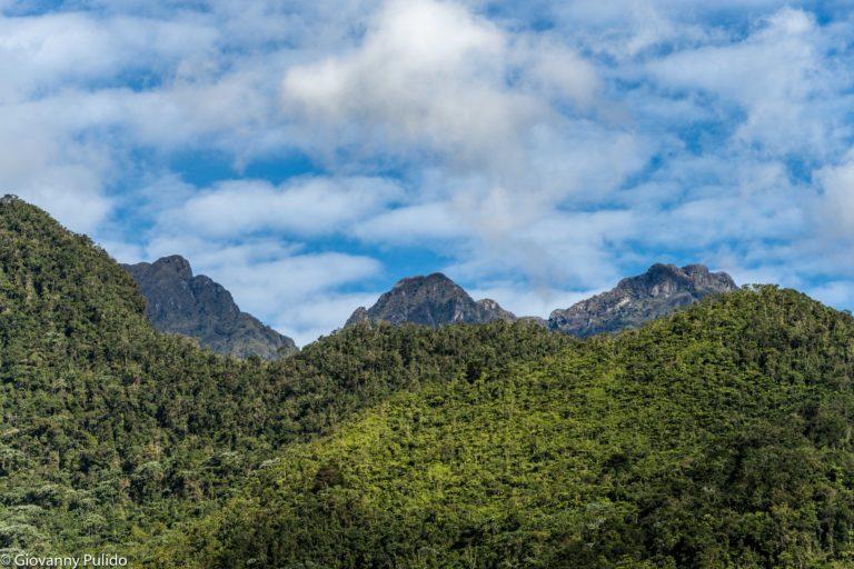 Parque Nacional Natural Farallones de Cali. Foto: © Giovanny Pulido