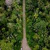 carretera manu