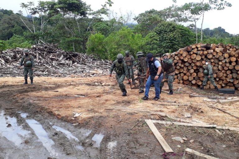 Tala ilegal en Ecuador. Tres aserraderos clandestinos ubicados en el cantón Arajuno, provincia de Pastaza, fueron desarticulados en operativo realizados por el Ejército y la Unidad de Protección Ambiental de la Policía el pasado 23 de julio de 2020. Se retuvo madera de balsa.Foto: Policía Ecuador.