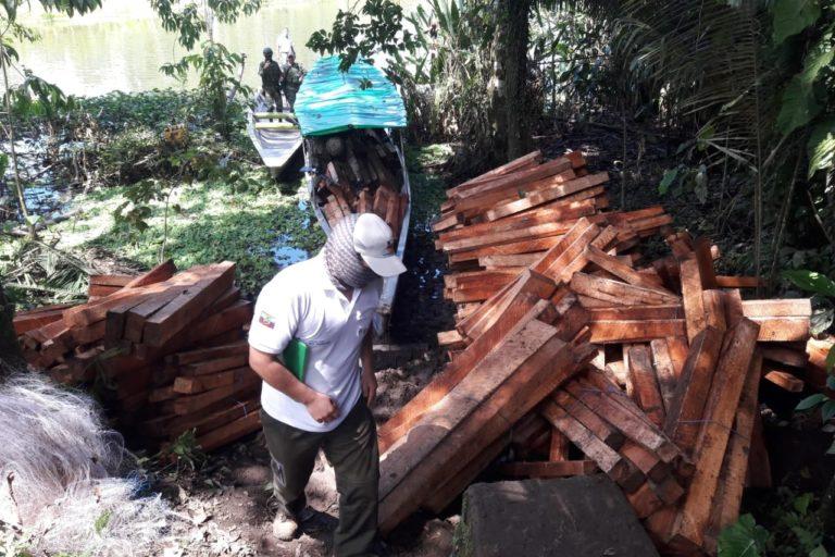 Tala ilegal en Ecuador. Troncos de balsa extraídos ilegalmente fueron retenidos por la Dirección zonal de Sucumbíos del Ministerio de Ambiente y las Fuerzas Armadas en en el interior de la Reserva Biológica Limoncocha a mediados de julio 2020. Foto: MAE Sucumbíos.