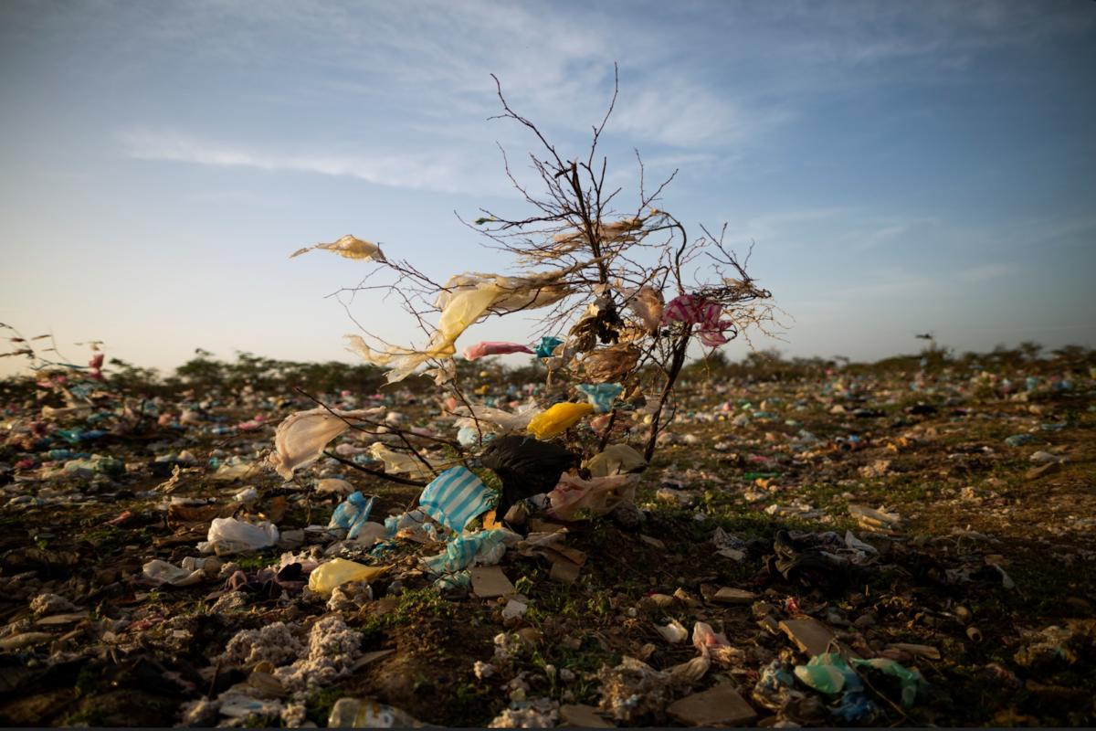 Planeta-vivo-2020-foto-esteban-vega-la-rotta-contaminacion-por-plastico-en-maicao-la-guajira-1200x800