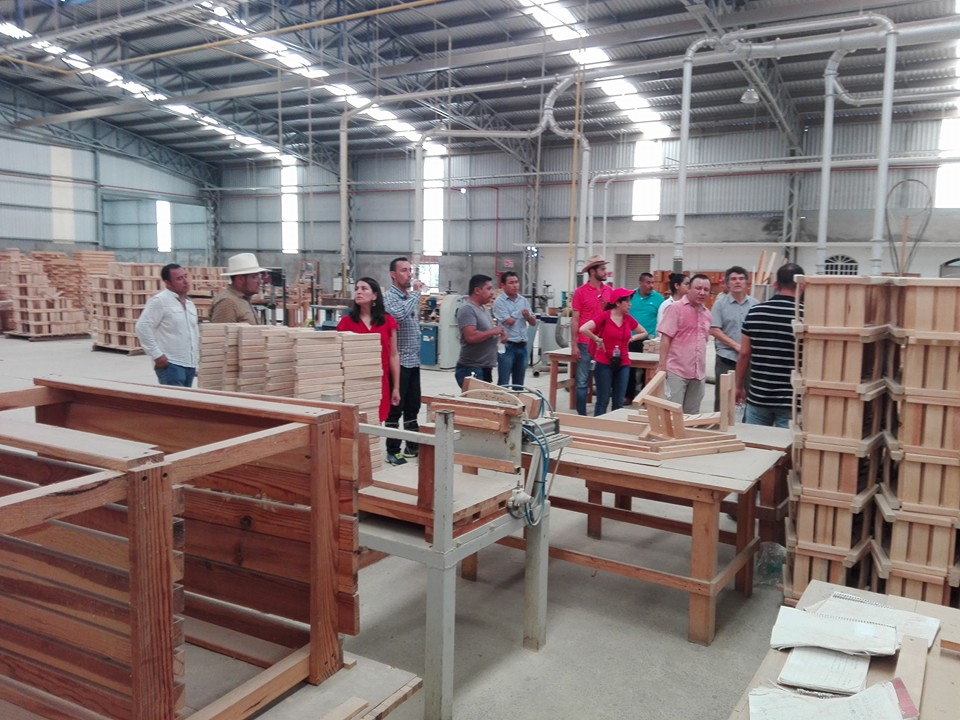 Fábrica de muebles en El Balcón, Guerrero