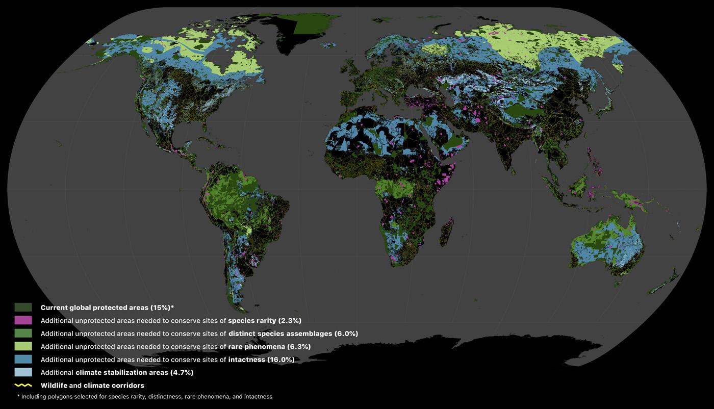 """Áreas terrestres donde se necesitan acciones. En rosa, áreas para preservar especies raras. Fuente: artículo 'Una """"red de protección global"""" para revertir la pérdida de biodiversidad y estabilizar el clima de la Tierra'."""