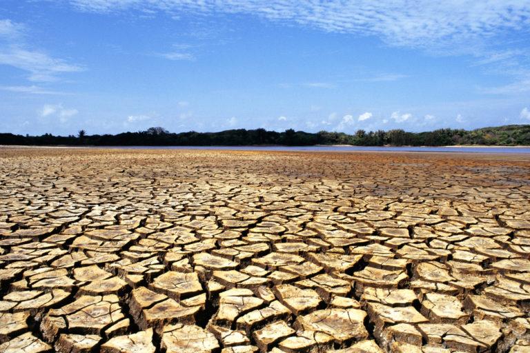 Suelo erosionado en Maranhao, Brasil. Foto: WWF.