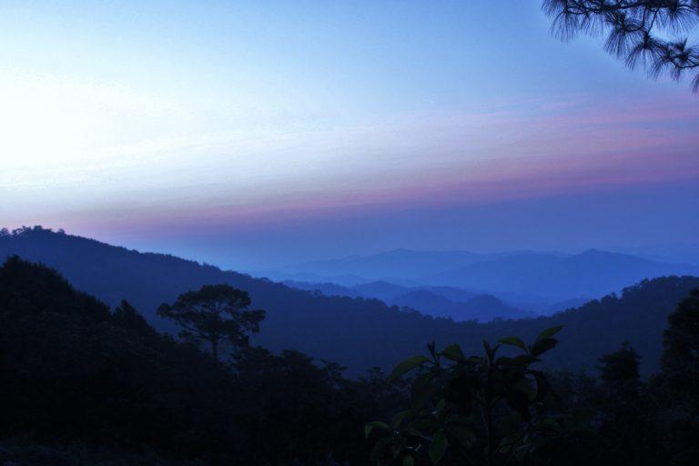 Bosque de San Juan Lachao, Oaxaca