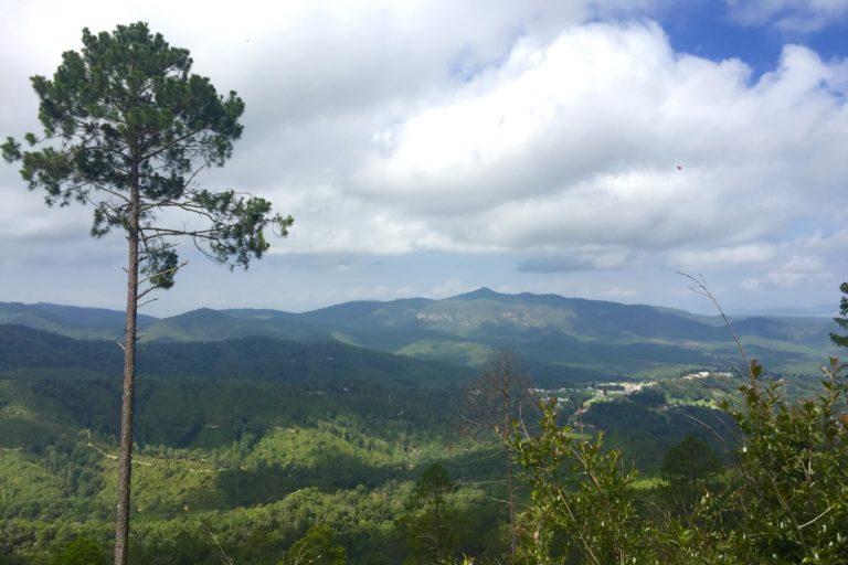 Ejido La Selva