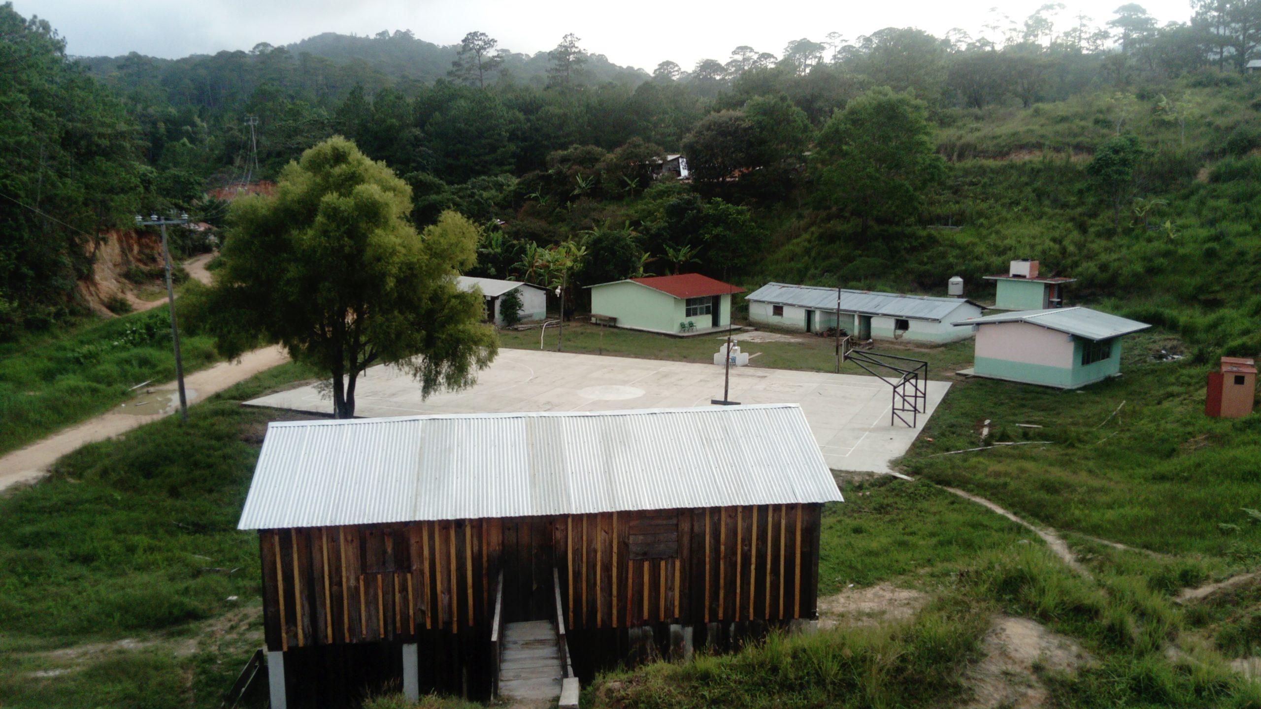 Mopnte Sina´í-Chiapas-Manejo forestal