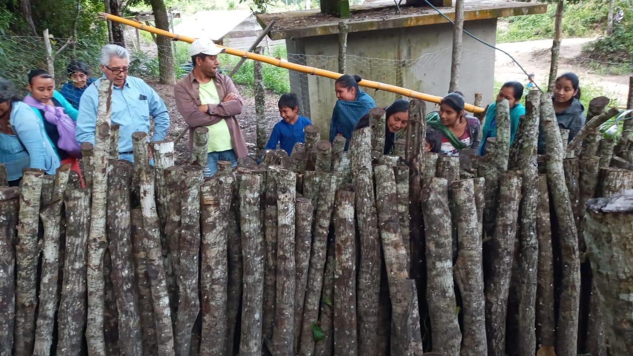 Monte Sinaí, manejo forestal en Chiapas