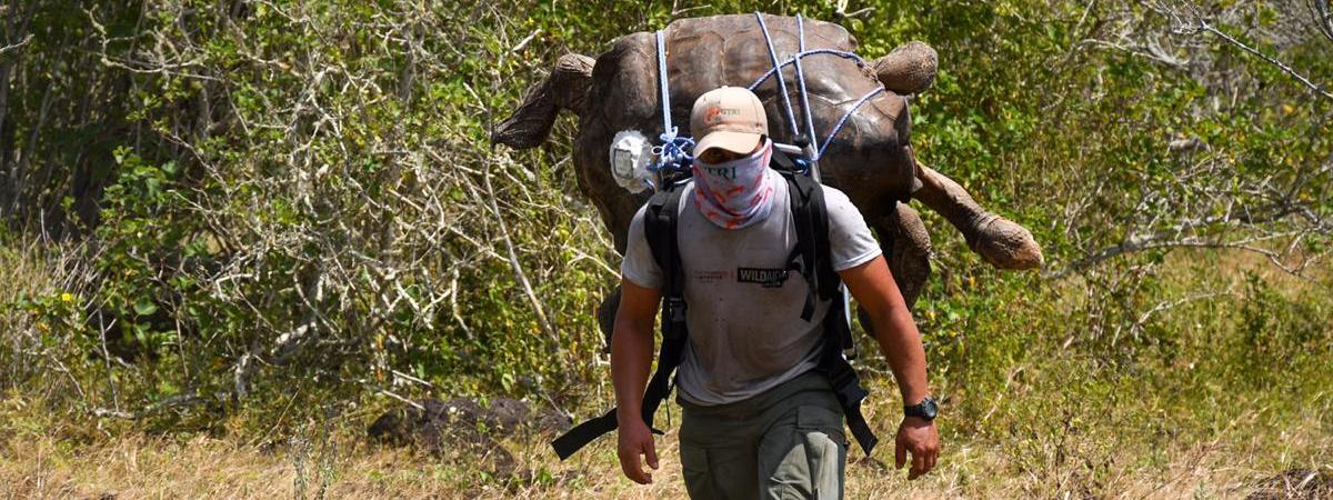 Despidos guardaparques Ecuador. Los guardaparques son los más afectados con la reestructuración que vive el Ministerio de Ambiente y Agua. Fotografía de la Asociación de Guardaparques del Ecuador (AGE).