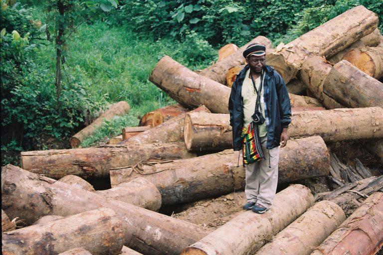 El profesor sudafricano Blessing J. Karumbidza participó de la Misión Internacional de Agrocombustibles y Soberanía Alimentaria de Acción Ecológica. En la imagen, sobre una pila troncos talados al borde de una plantación de palma en San Lorenzo. Foto: Julianne A. Hazlewood.
