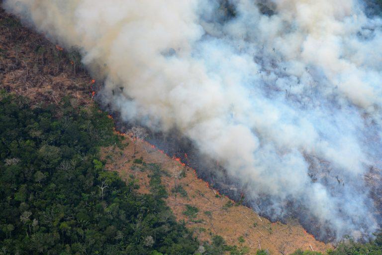 La destrucción de bosque dentro del Resguardo Indígena Nukak avanza cada día. Foto: Fundación para la Conservación y el Desarrollo Sostenible (FCDS).
