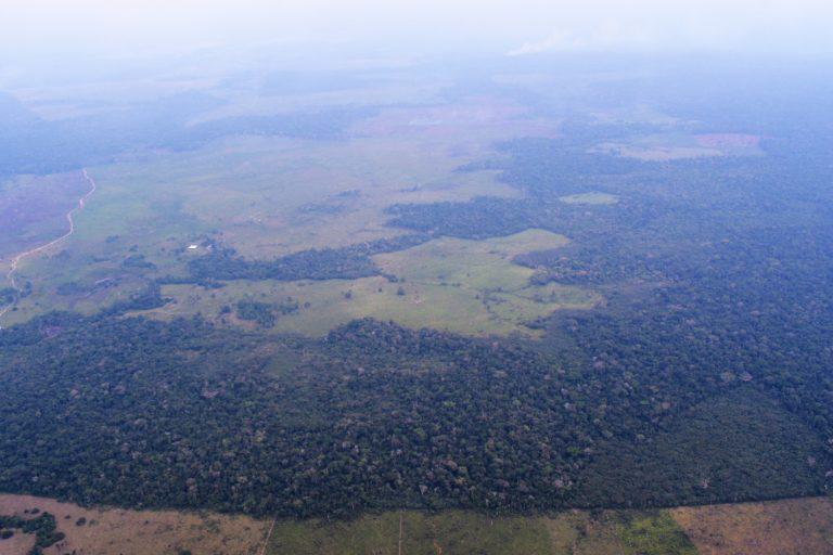 La deforestación para cultivos agroindustriales, coca y ganadería tienen en peligro el territorio de los indígenas Nukaka Makú. Foto: Fundación para la Conservación y el Desarrollo Sostenible (FCDS).