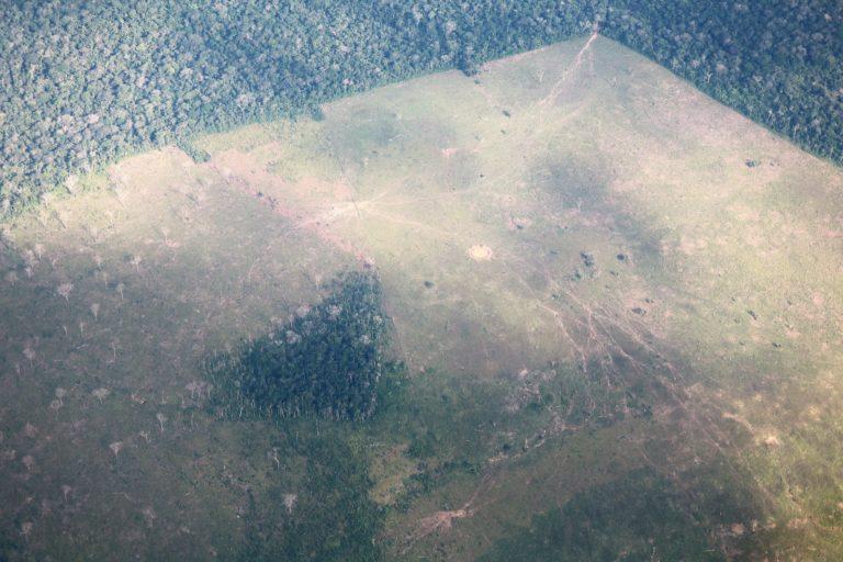 Imagen aérea del resguardo Nukak Makú. Foto: Fundación para la Conservación y el Desarrollo Sostenible (FCDS).