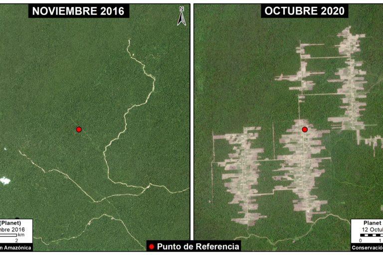 menonitas en Perú