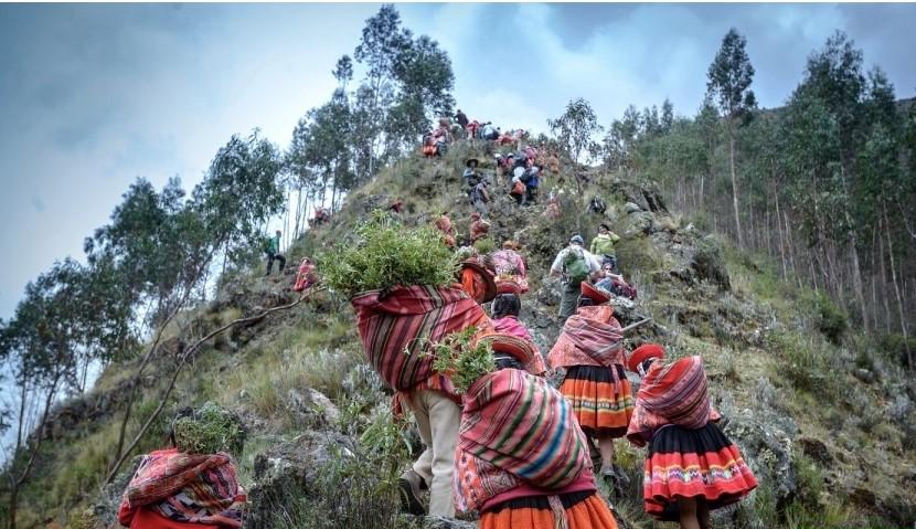 Festival Queuña Raymi
