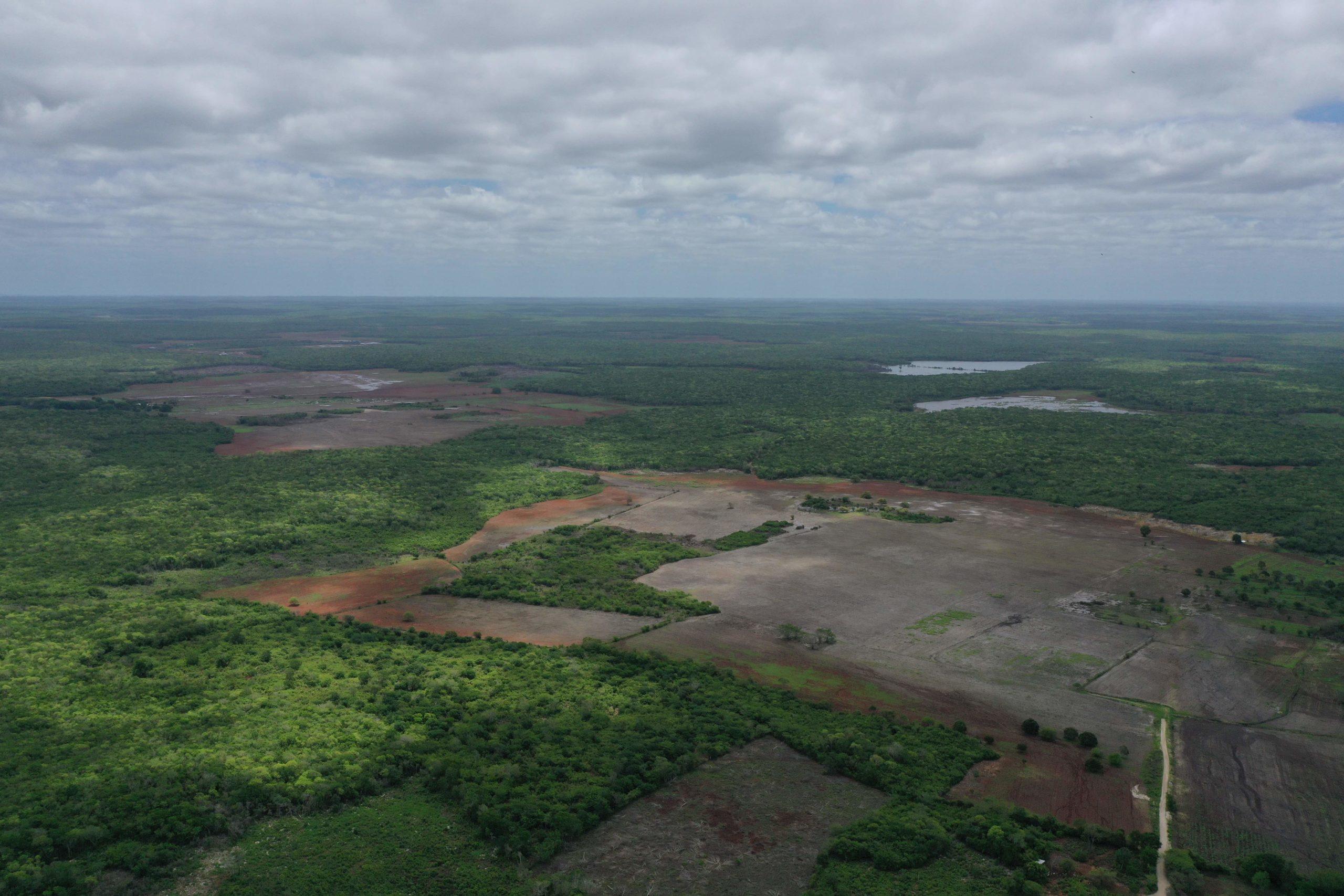 Hopelchén-Deforestación