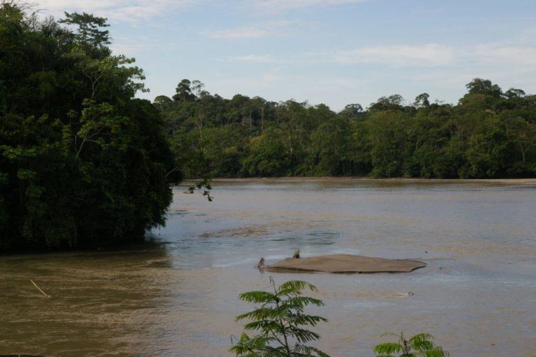 La Reserva de Producción de Fauna Cuyabeno en Ecuador es una gran zona de humedales. Foto: Vilma Lucero.