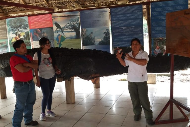 Desde marzo de 2020 la Reserva de Producción de Fauna Cuyabeno cerró sus puertas a los turistas. Foto: Vilma Lucero.