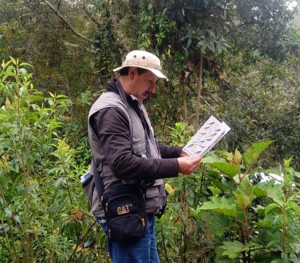 Gonzalo Cardona pasaba horas enteras observando el comportamiento del loro orejiamarillo y contando los individuos. Cortesía: Fundación ProAves.