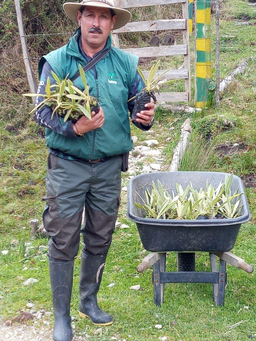 El defensor ambiental Gonzalo Cardona germinaba semillas de palma de cera tanto en su finca como en la reserva natural de su municipio. Cortesía: Fundación ProAves.