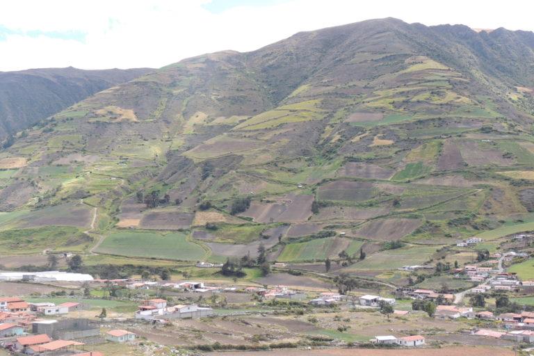 Mucuchíes es la capital del municipio Rangel, estado Mérida en Venezuela. Se ubica a los pies de la Sierra Nevada, en los Andes, a una altitud de 2.983 m.s.n.m. De aquí es endémica la especie Aromobates zippeli. Foto: María Fernanda Rodríguez.