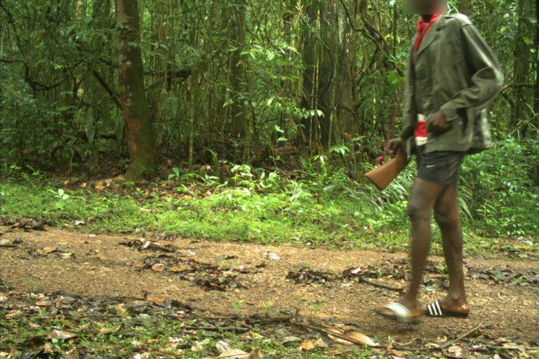 En las cámaras trampa de Vanessa Kadosoe también han aparecido cazadores con rifles y mineros con detectores de metales. Desde el 2020, estas personas han transitado espacios que están cerrados para el público y donde habita el jaguar. Foto: Institute for Neotropical Wildlife and Environmental Studies (NeoWild).