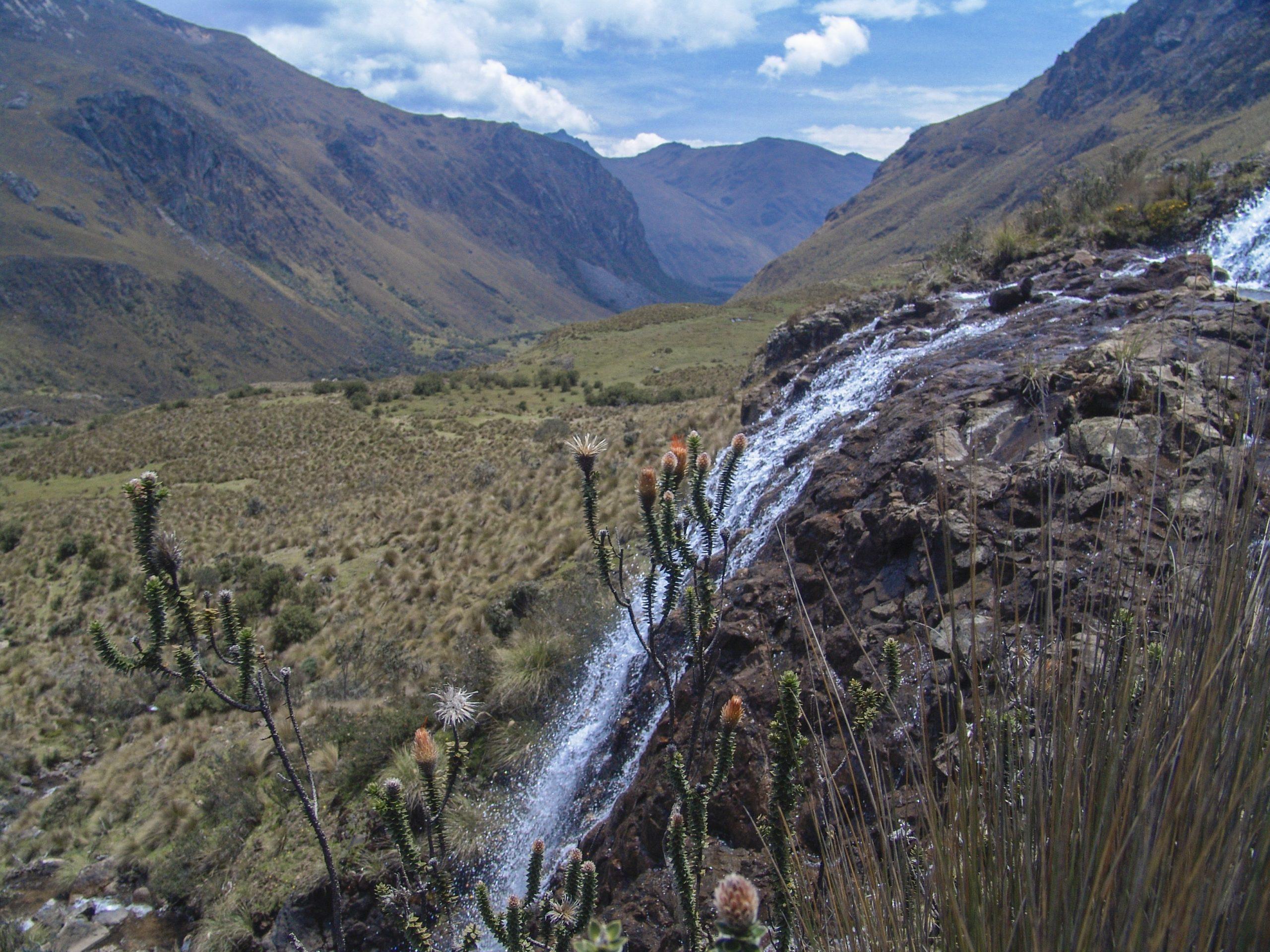 Los cuencanos le dijeron NO a la minería en sus páramos. Foto: Gustavo Morejón.