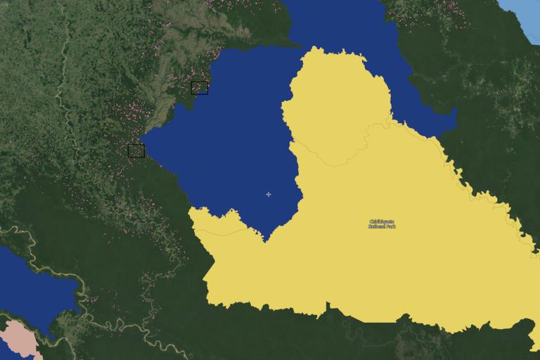 Entre el 1 y el 31 de enero de 2021 Global Forest Watch llamó la atención sobre la deforestación detectada en los dos recuadros negros, zonas al interior y colindantes con el Parque Serranía de Chiribiquete. Imagen: Global Forest Watch.