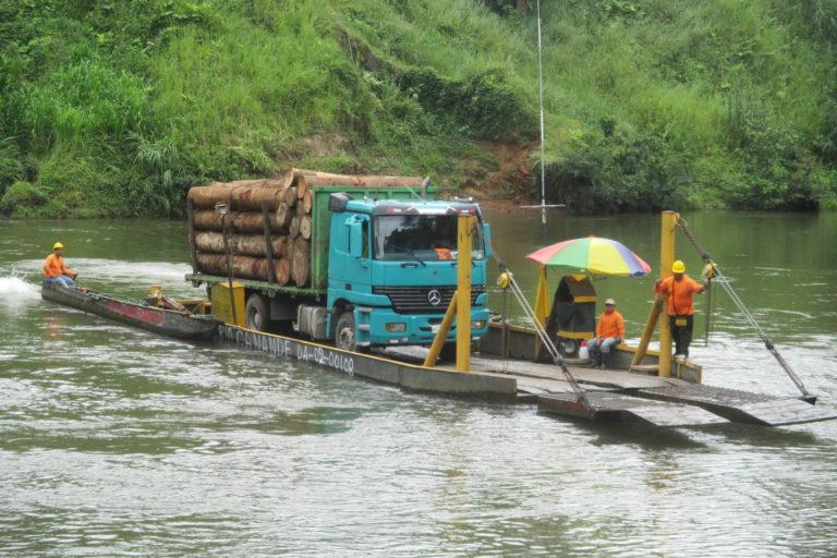 Los datos más actualizados del Ministerio de Ambiente indican que cada año se pierde un promedio de 94 353 hectáreas de bosque en Ecuador. Fotografía de Richard Fischer.
