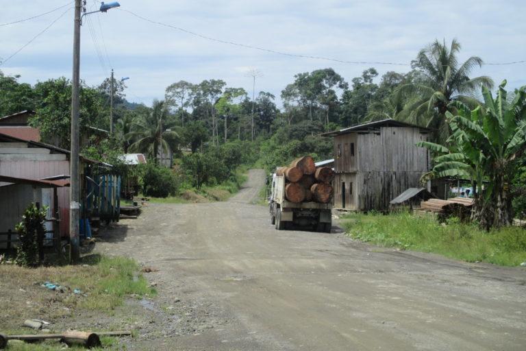 En los últimos 28 años, Ecuador ha perdido más de 2 millones de hectáreas de bosque tropical. Fotografía de Richard Fischer.