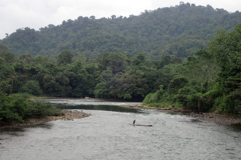 La mayoría de las personas que habitan en los bosques tropicales de Ecuador viven en pobreza extrema —con menos de 47,37 dólares al mes. Fotografía de Richard Fischer.