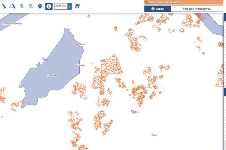 Cultivos de piña alrededor y dentro del Refugio de Vida Silvestre Caño Negro en 2019. Información del Sistema Nacional de Información Territorial (SNIT).