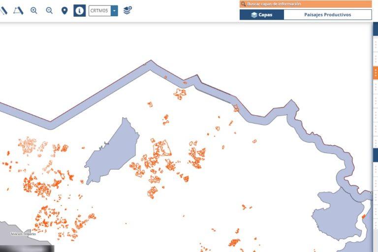 Piña dentro del Refugio de Vida Silvestre Corredor Fronterizo en 2015. Información del Sistema Nacional de Información Territorial (SNIT).