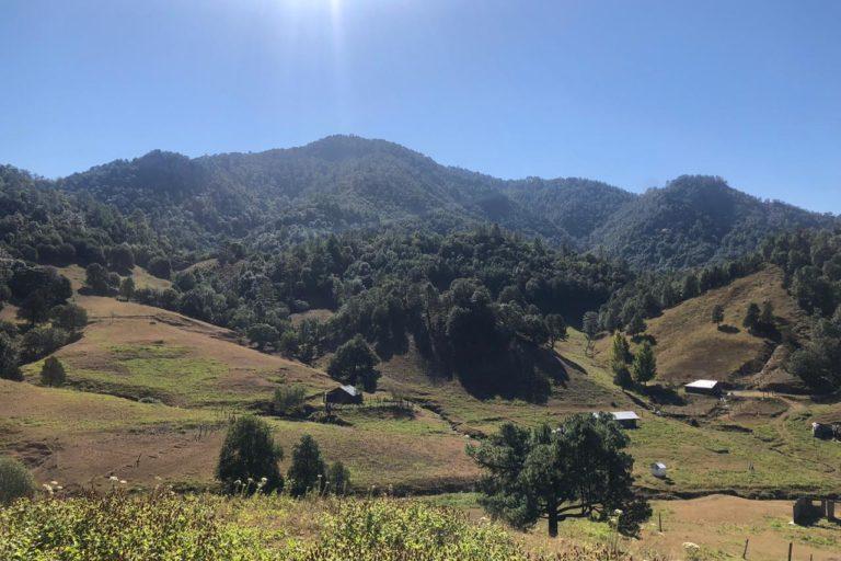 La comunidad de Coloradas de la Virgen se localiza al sur de la Sierra Tarahumara, en el municipio de Guadalupe y Calvo, en Chihuahua. Foto: Cortesía Alianza Sierra Madre.