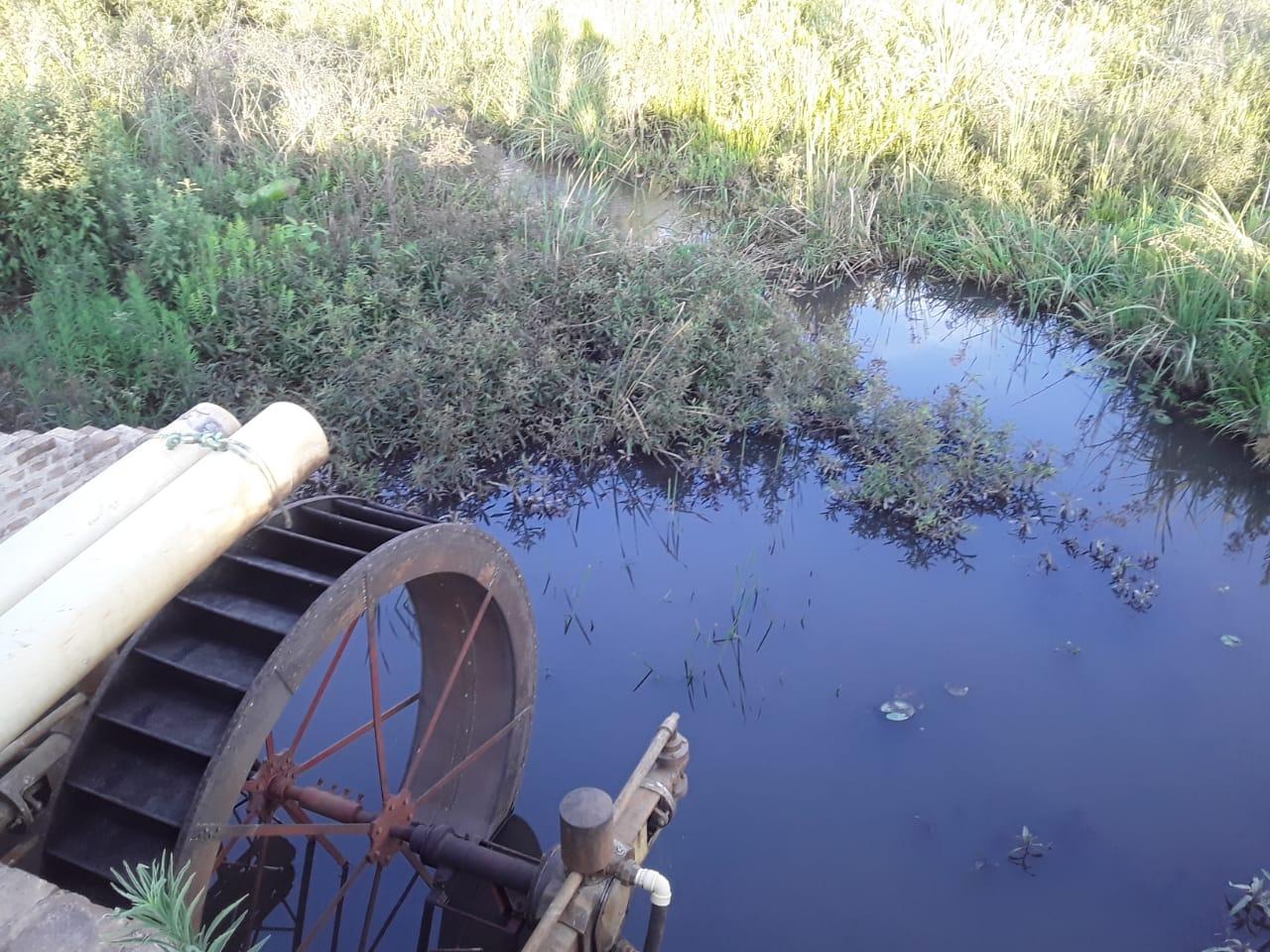 Este molino de agua en la hacienda ganadera era usado para enviar agua hacia potreros para el ganado. Foto: Gobierno Departamental de Santa Cruz.