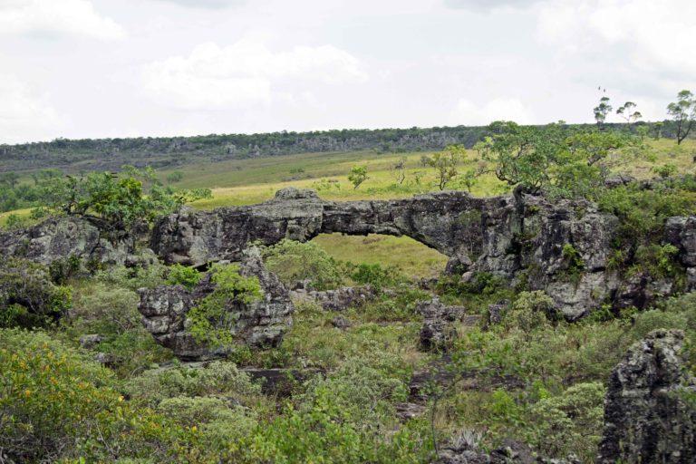 Paisaje de la Reserva Municipal de Vida Silvestre Tucabaca, un área protegida que forma parte de la cuenca del río Tucabaca. Foto: Eduardo Franco Berton.