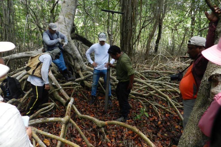 Comunidades participan de actividades en manglares mexicanos. Foto: cortesía Jorge Herrera.