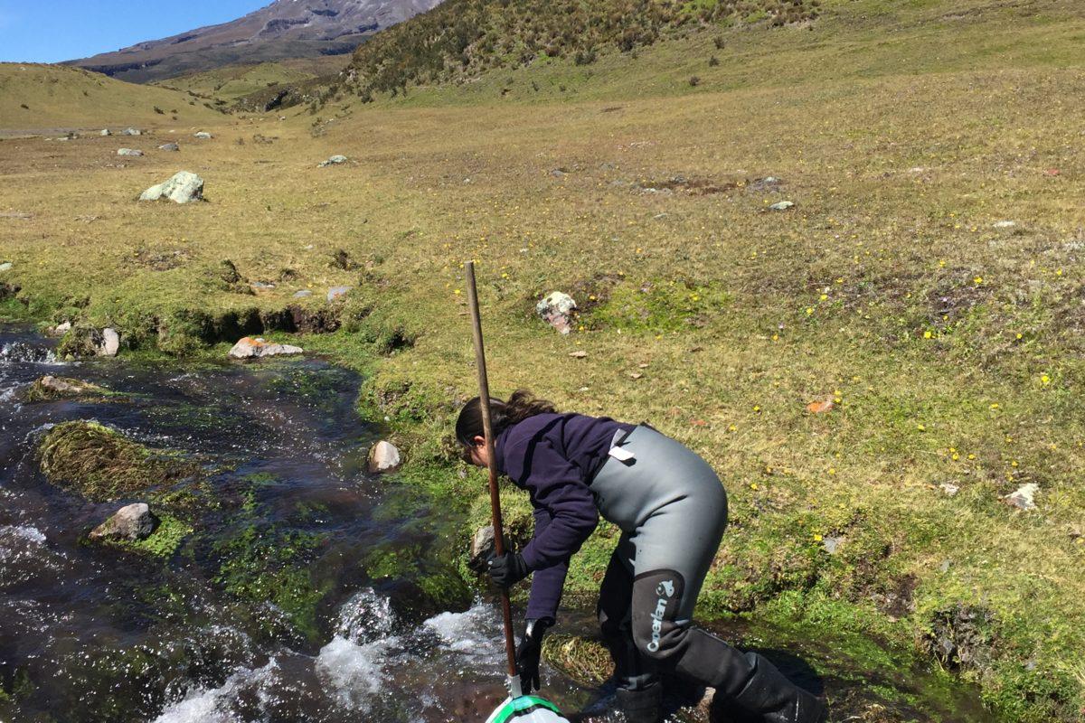 Blanca Ríos-Touma ha investigado la presencia de patógenos en las aguas de los ríos. Foto: Blanca Ríos-Touma.
