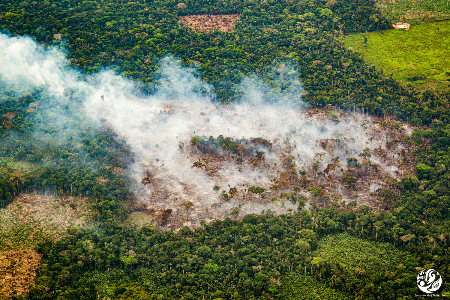 Fire in Nukak Indigenous Territory. Image courtesy of FCDS.