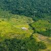 Deforestación, vía y colonización en el resguardo Yaguará, en límites con el parque Chiribiquete. Foto: FCDS.