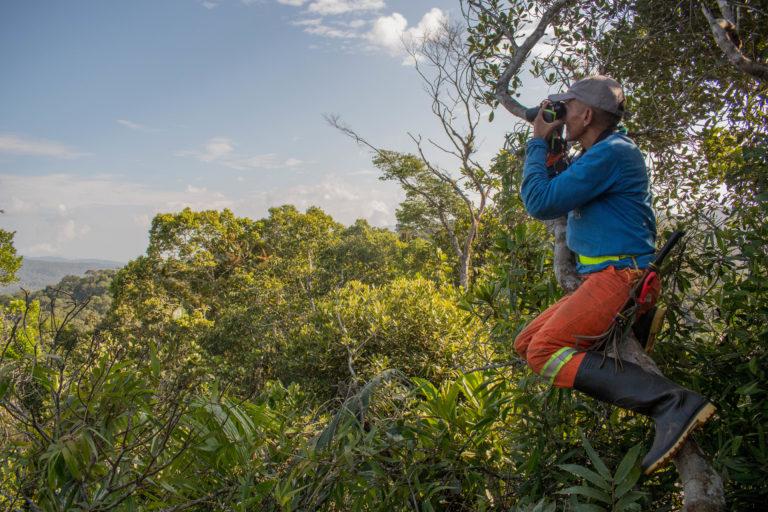 Álvaro uno de los guías locales. Foto: Carlos Bran-Castrillón - Uraba Nature Tours.
