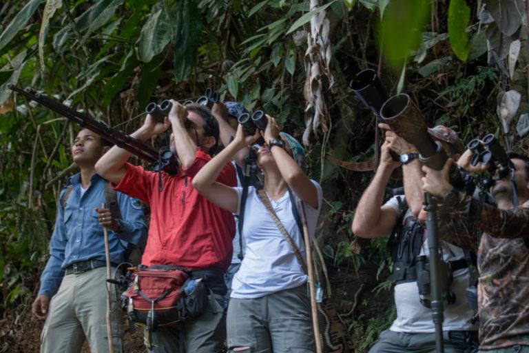 Investigadores en Murrucucú. Foto: Carlos Bran-Castrillón - Uraba Nature Tours.