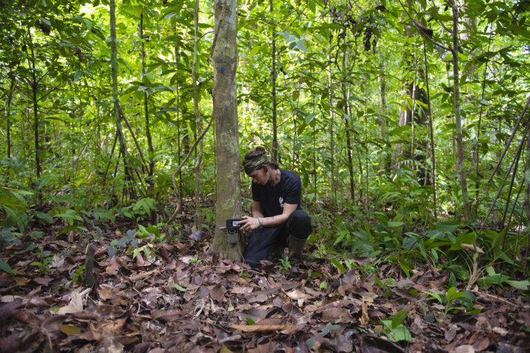 Markus Mejía es uno de los investigadores de Conservación Osa que trabaja en el monitoreo del corredor biológico mediante cámaras trampa. Foto: Nina Cordero.