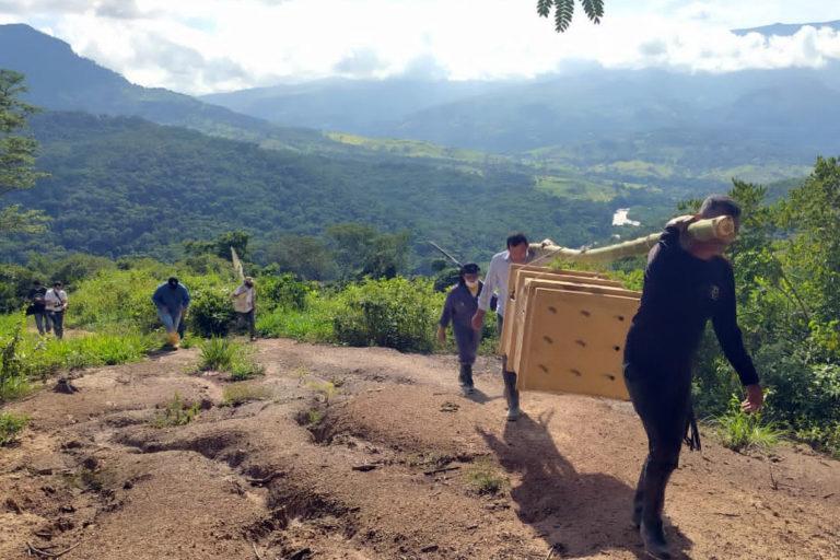 En zona rural de Sardinata se liberó al ocelote. Técnicos y comunidad lo trasladaron en un guacal. Foto: Corponor.