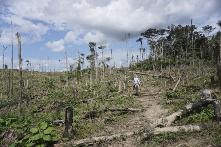 Así se ve la finca de donde sale ganado que ha llegado a varios supermercados de Colombia. Foto: EIA.