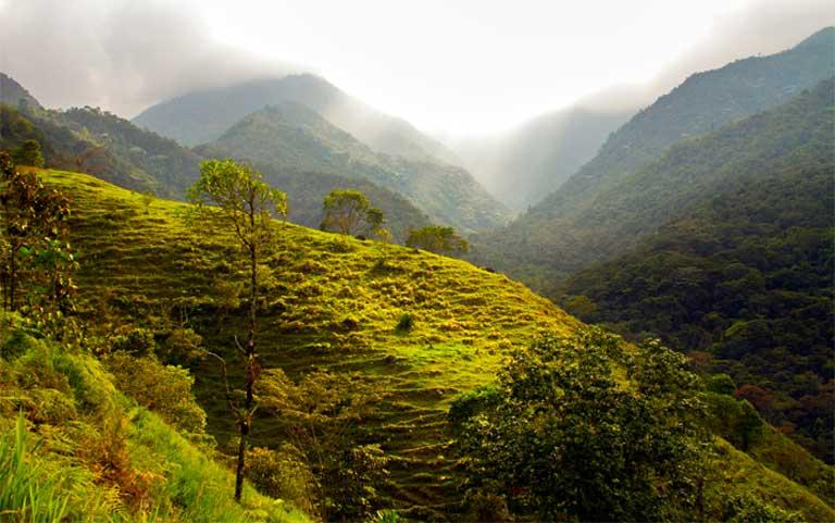El Parque Nacional Natural Farallones de Cali a lo largo de la costa Pacífica de Colombia es uno de los parques nacionales que durante mucho tiempo ha estado amenazado por la extracción ilícita de oro. Foto: World Resources en Visualhunt.com / CC BY-NC-SA.