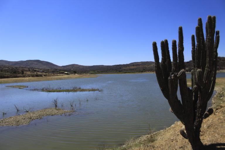 La presa El Bayito abastece a los habitantes de San José del Progreso, quienes denuncian que el nivel de agua ha disminuido desde que llegó la minera. Foto: Roxana Romero.